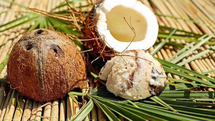 coconuts-pina-colada-puerto-rico