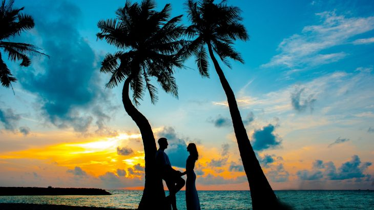 couple-under-palm-tree-sunset