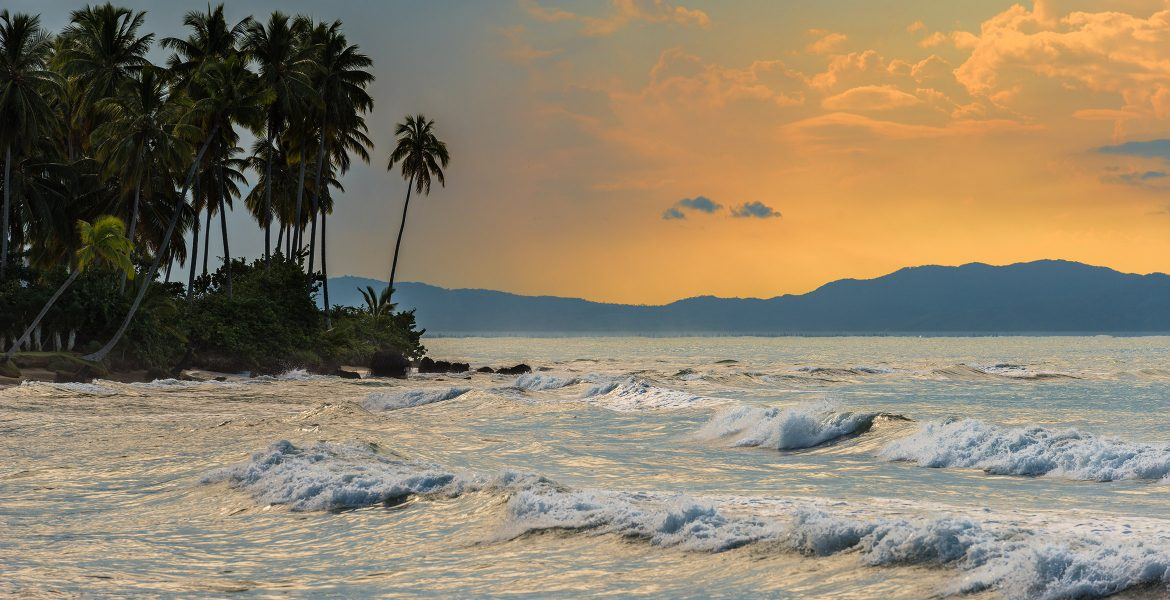 sunset-waves-palm-trees