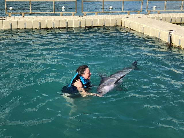 dolphin-training-jamaica
