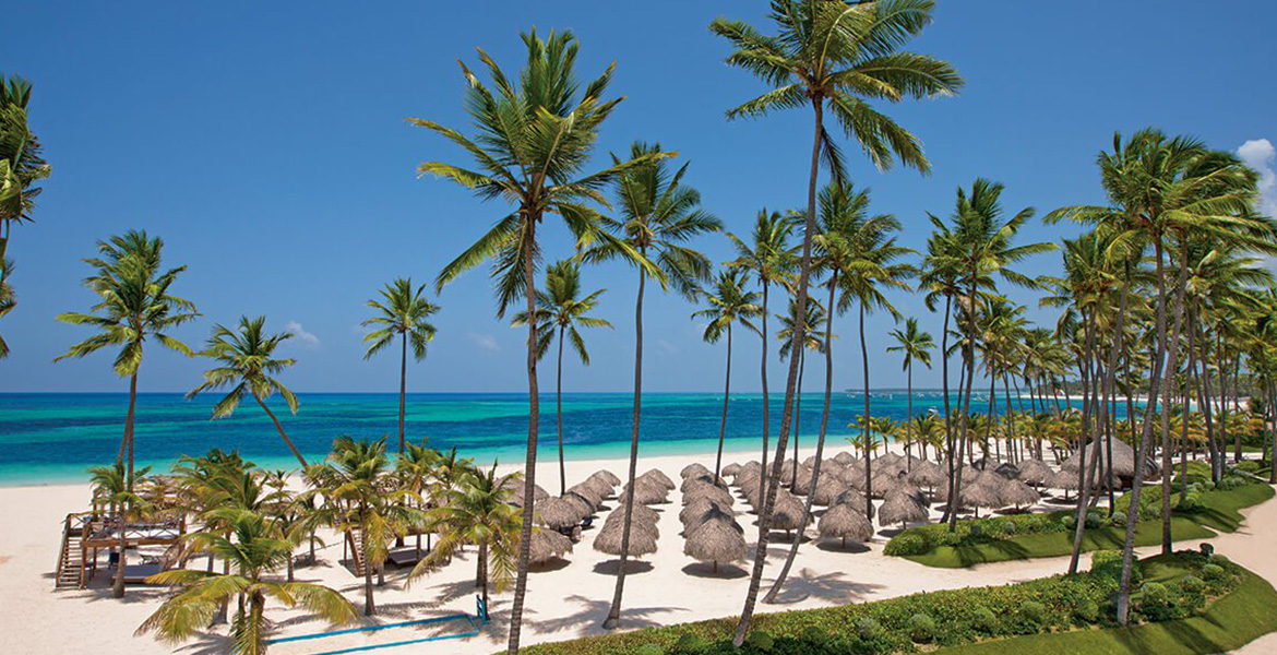 palm-tree-beach-punta-cana