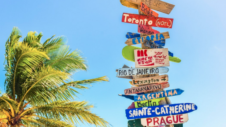 destination-signs-palm-tree