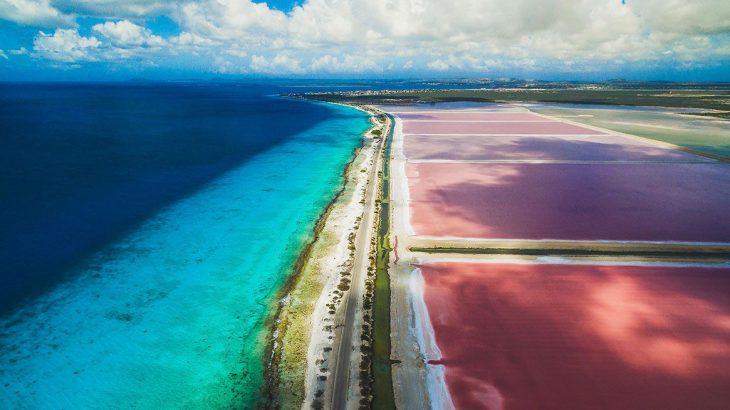 pink-salt-flat-caribbean-sea-bonaire