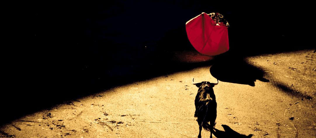 bull-fight-matador-bull