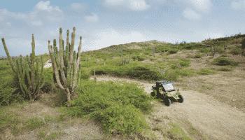 aruba-desert-atv