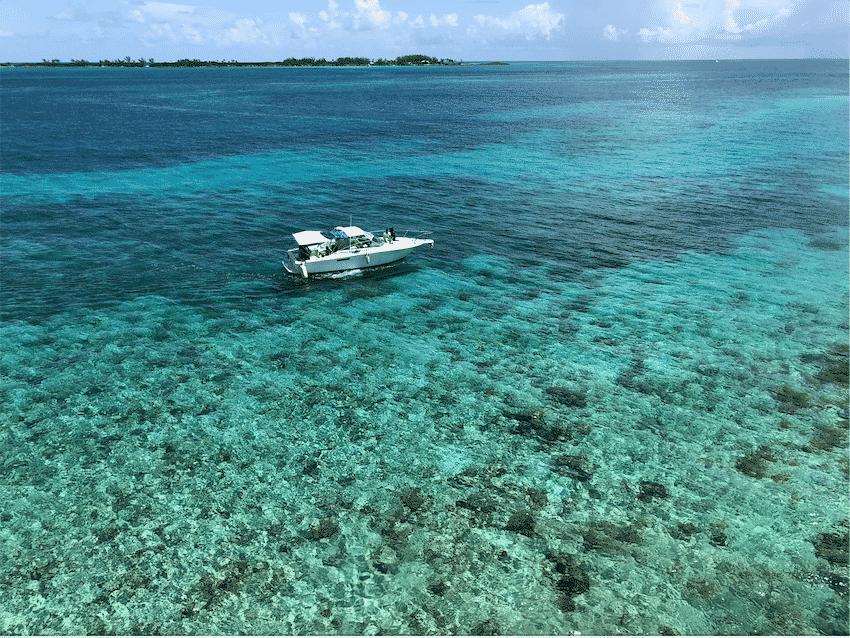 reef-pearl-island-nassau-bahamas