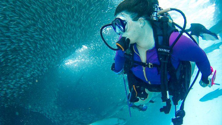 scuba-diving-fish-shark