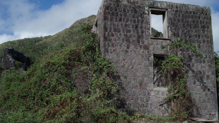 ruins-eden-brown-estate