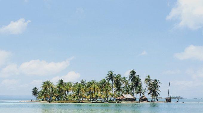 foliage-green-water-blue-tropical