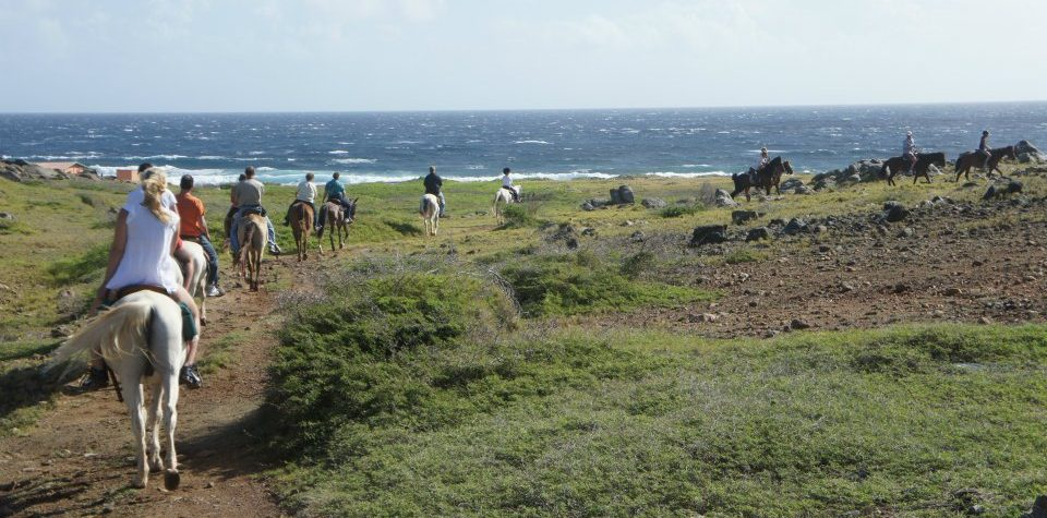 horseback-riding-beach-group-aruba