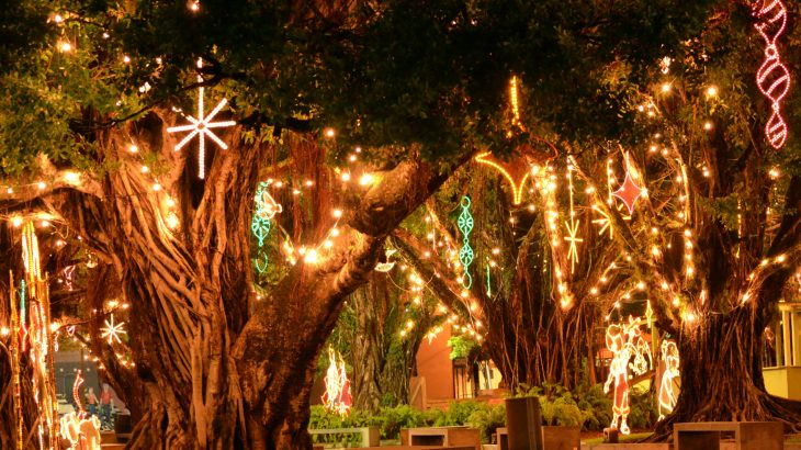 christmas-humacao-puerto-rico