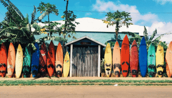 rainbow-surfboards-lined-up-shack