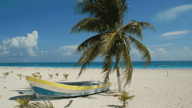 little-boat-on-sand-beach-palm-tree