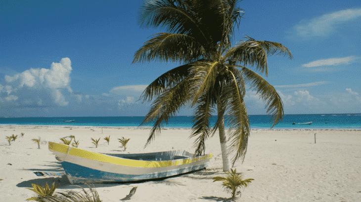 little-boat-on-sand-beach-palm-tree