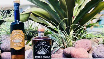 casamagna-tequila-marriott-puerto-vallarta
