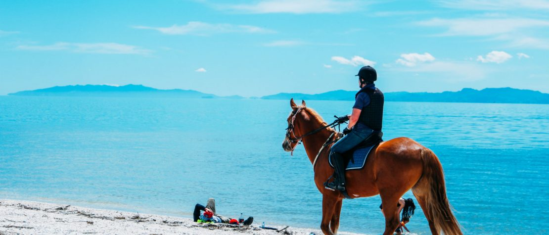 man-riding-horse-beach-blue-ocean-behind
