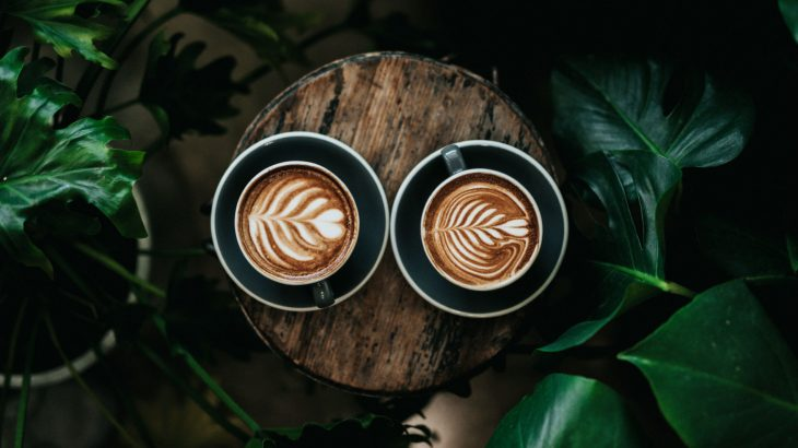 coffee-plant-design-plants