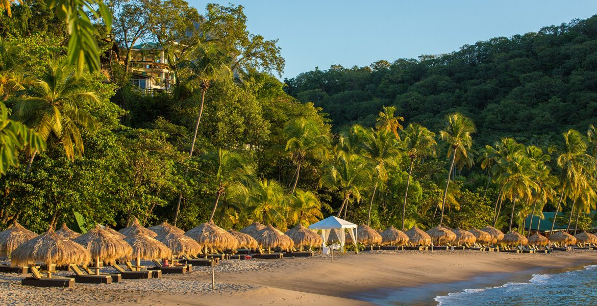 golden-sand-beach-huts-green-palm-trees