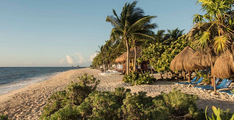white-sand-beach-palm-trees