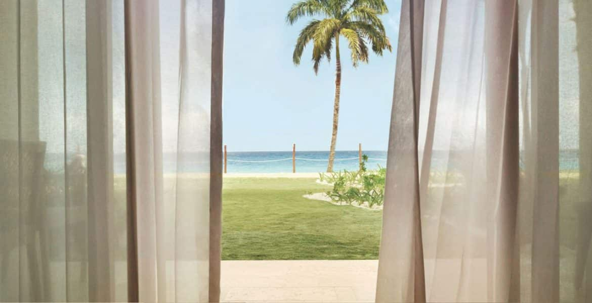 ocean-view-from-suite-sheer-curtains-palm-tree-blue-ocean