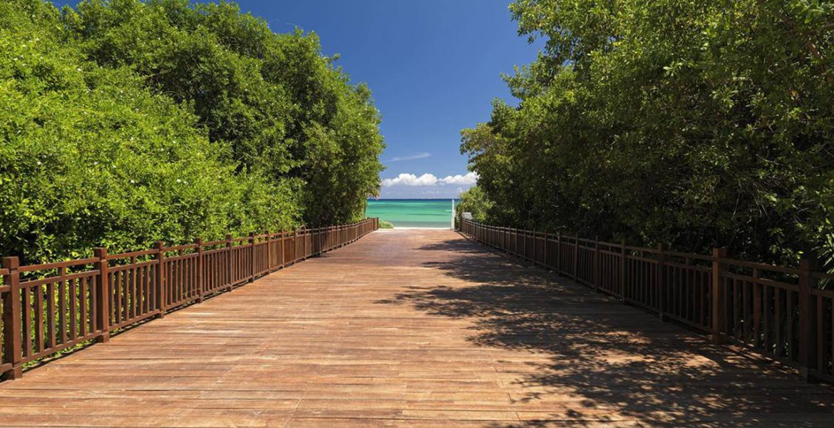 wooden-walkway-to-beach-green-foliage-on-sides