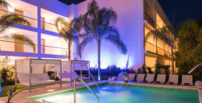 resor-pool-night-palm-tree