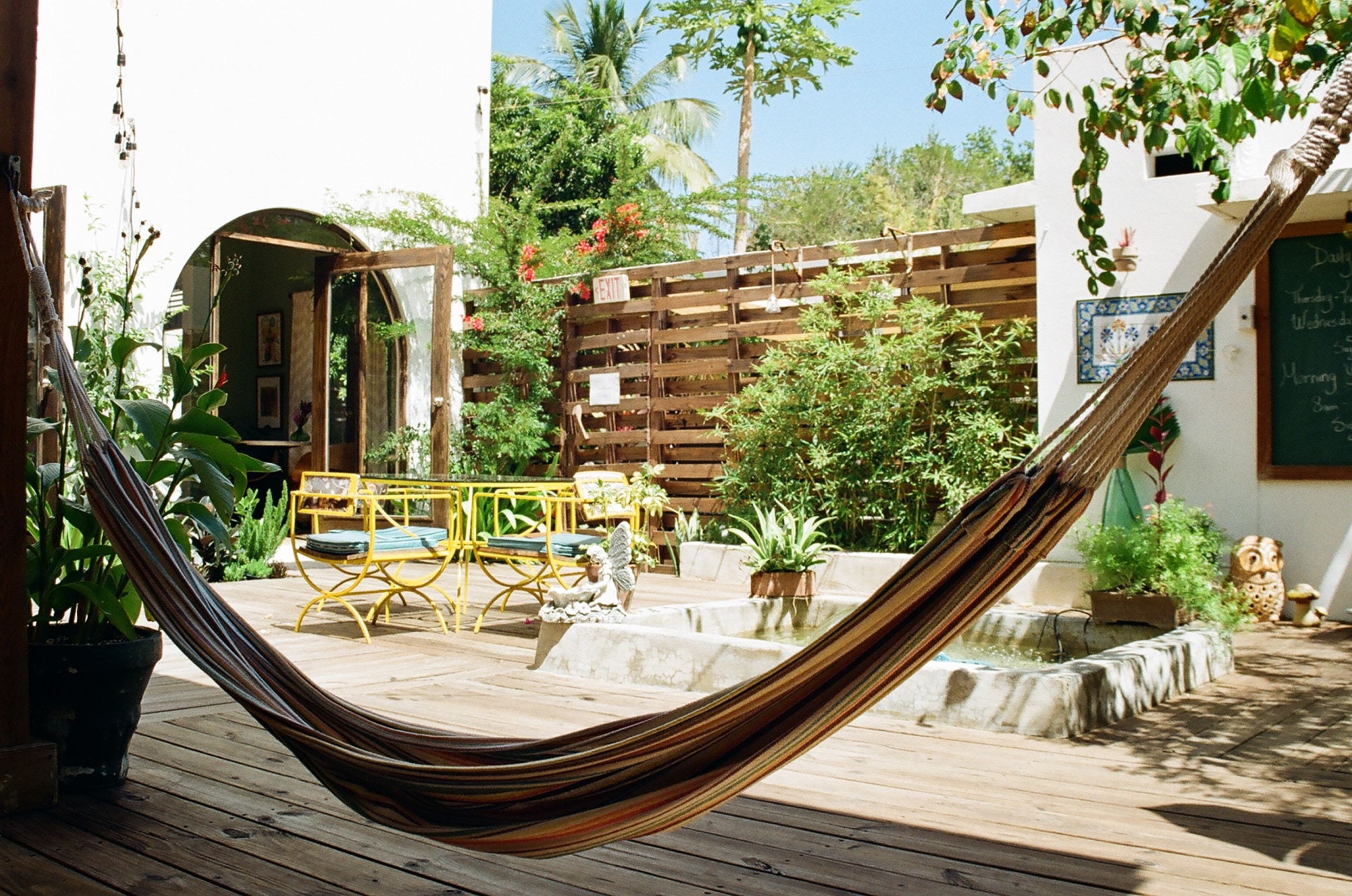 Hammock outside courtyard at the Dreamcatcher