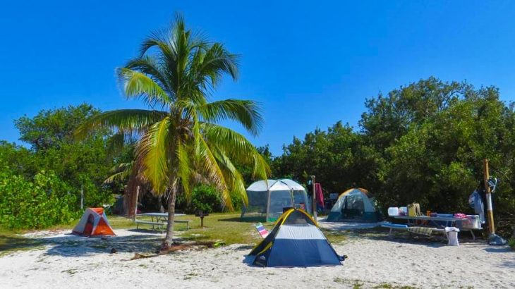 camp-site-on-beach-palm-tree-dry-tortugas-national-park