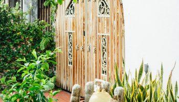 Door at the Dreamcatcher