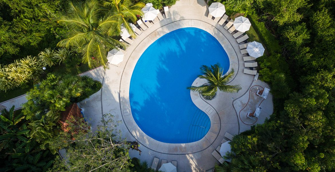 aerial-view-blue-bean-shaped-pool