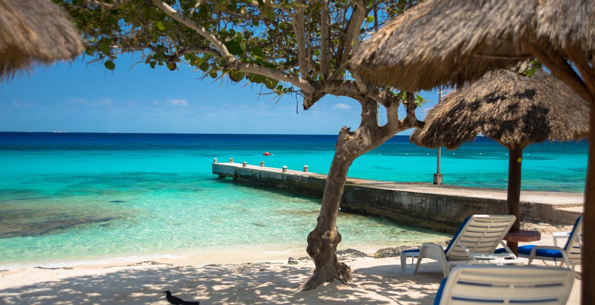 view-of-beach-from-under-shaded-tree-pier-turquoise-ocean