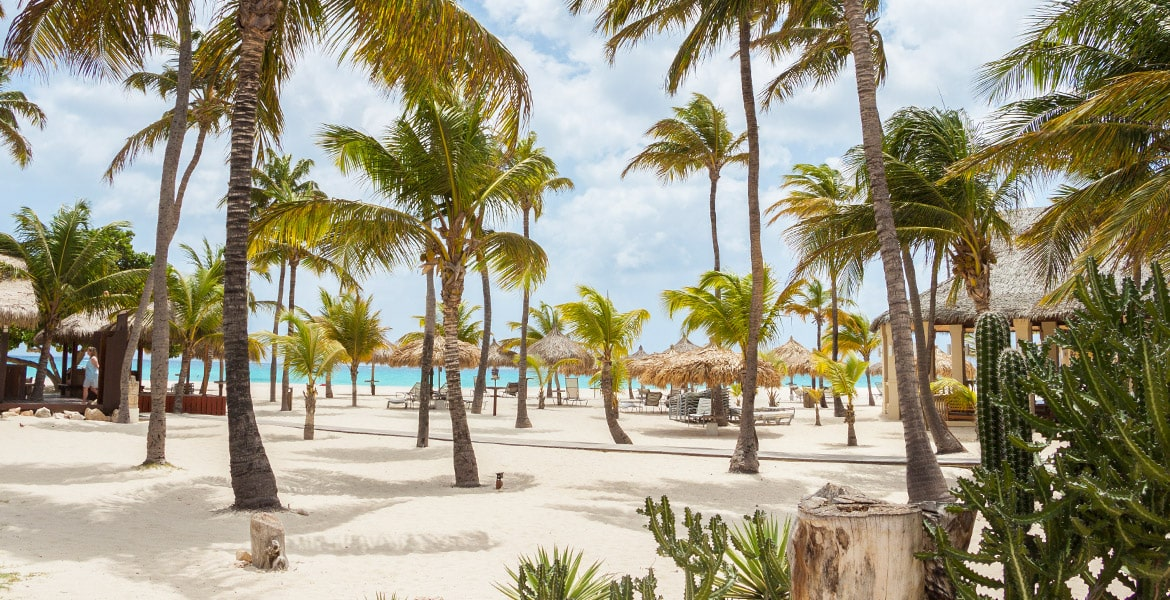 manchebo-beach-resort-beach-aruba