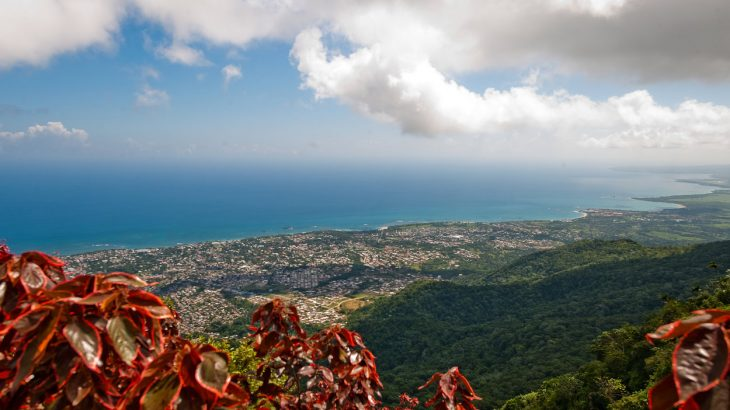 view-from-mountain-dominican-republic-red-leaves-ocean
