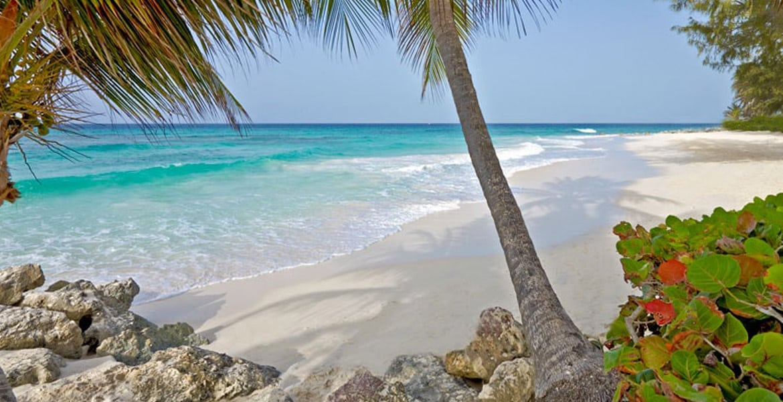 beach-Turtle-Beach-by-Elegant-Hotels