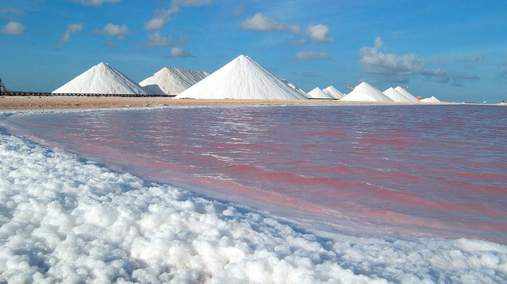 Mounds of white salt along a beach with pink water