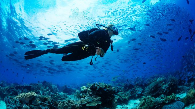 scuba-dive-7000-foot-deep-wall-grand-turk-caribbean