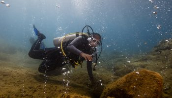 A diver looks at bubbles in the Champagne Reef
