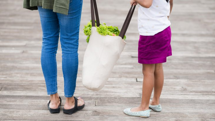 how-to-go-plastic-free-reusable-shopping-bag