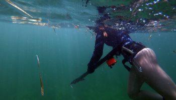 female-spearfishing-florida-gulf-the-dive-source-savage-spearfishing