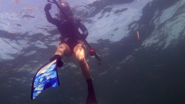 female-spearfishing-florida-gulf-the-dive-source-savage-spearfishing