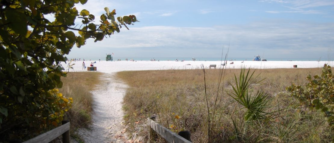 Walk way down to Siesta Key Beach with sand dunes and sea grass on either side