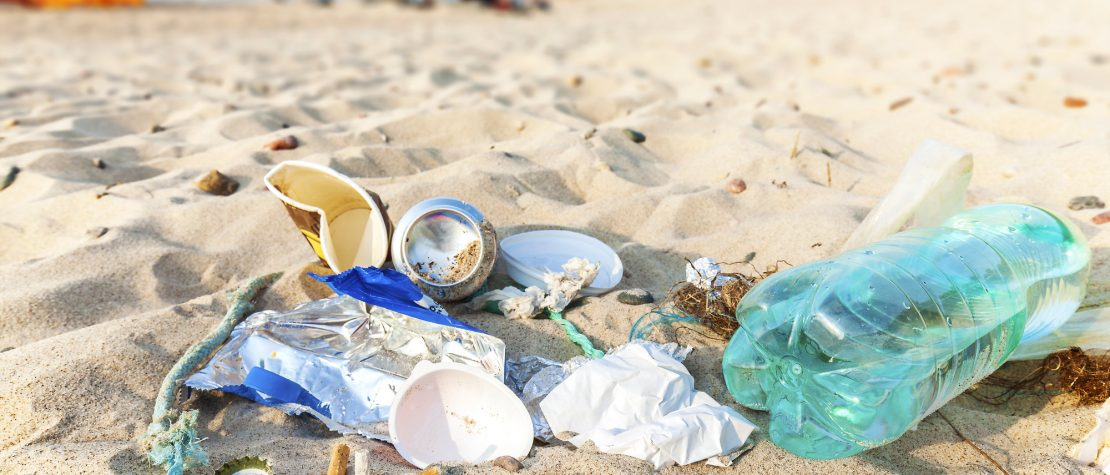 host a beach cleanup trash on sand