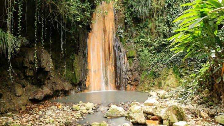 diamond-falls-botanical-gardens-st-lucia